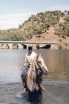 caballoagua